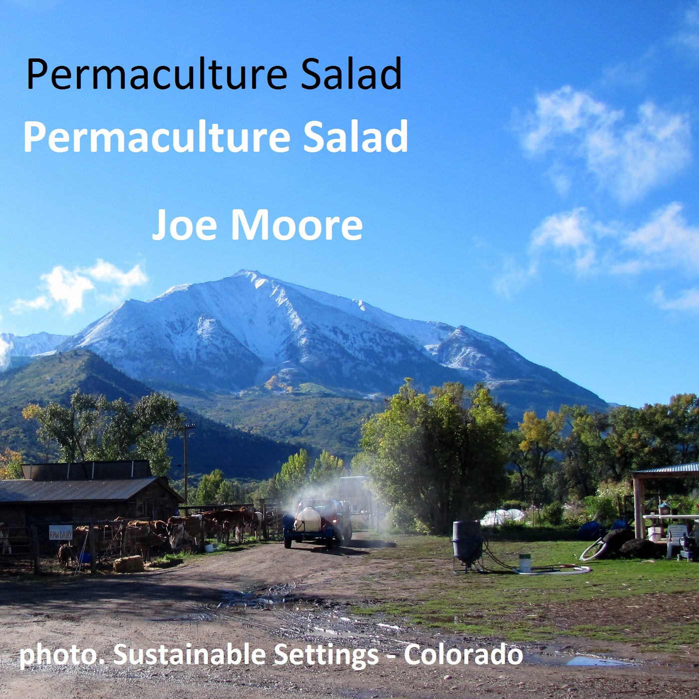 Permaculture SaladPermaculture Salad